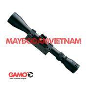 ong-ngam-gamo-39x40-ir-tay-ban-nha-cao-cap